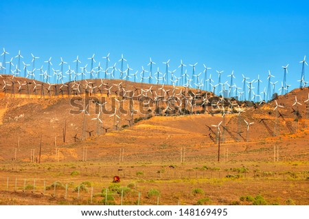 Row of wind turbines in California at sun set. - stock photo