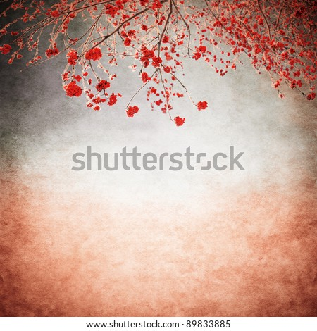 rowan berries bushes on the old background - stock photo