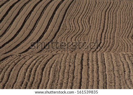 Rows in the plowed field. Rural landscape, agriculture.