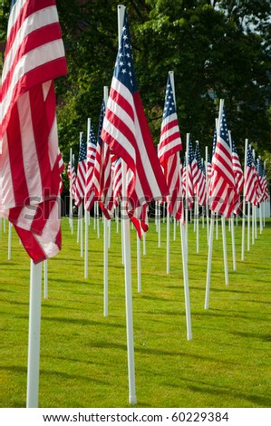 Rows of American flags at the park on Memorial Day - stock photo