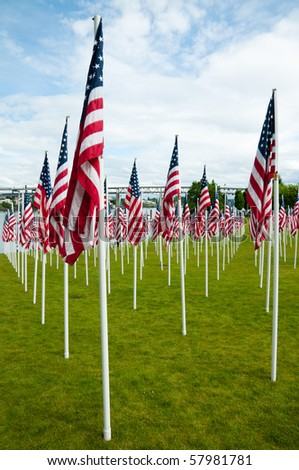 Rows of American flags on Memorial Day - stock photo