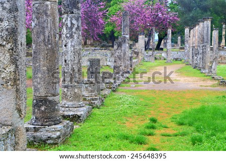 Rows of ancient columns in the sanctuary of Zeus, Olympia, Greece - stock photo