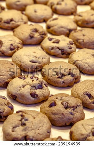 Rows of chocolate chip cookies with cooling on wax paper on table top - stock photo