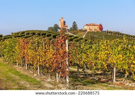 Rows of colorful vineyards and small town on the hill on background in autumn in Piedmont, Northern Italy. - stock photo