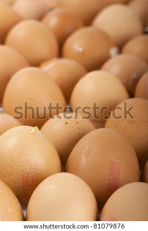 Rows of egg shells. - stock photo