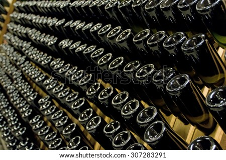 Rows of many empty wine bottles in winery cellar