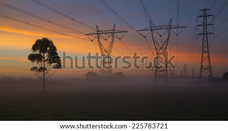 Rows of power lines on a misty morning. - stock photo