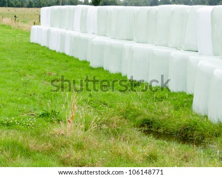 Rows of stacked silage or haylage bales, hay sealed in plastic wrapper left outdoors for fermentation to feed livestock - stock photo