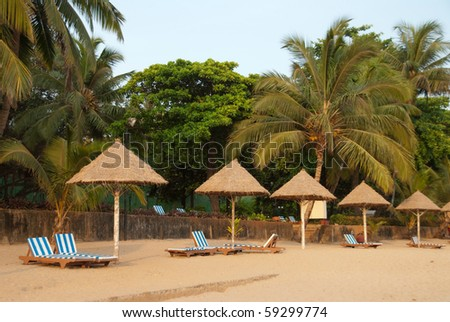 Rows of umbrellas and beach beds in a resort