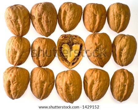 Rows of walnut with opened walnut in center - stock photo