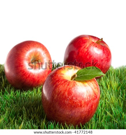 Royal Gala apples on grass with white background - stock photo