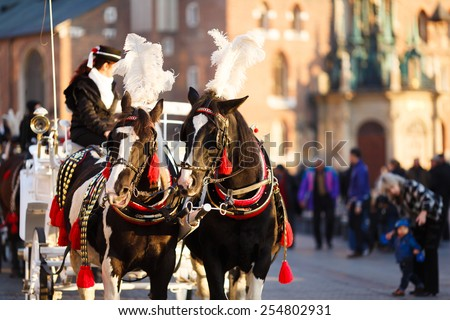 Royal Horses at Market square in Krakow, Poland - stock photo
