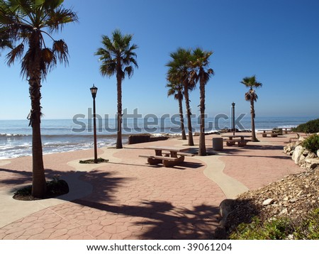 Royal Palms at Whites Point, Los Angeles County Beach. - stock photo