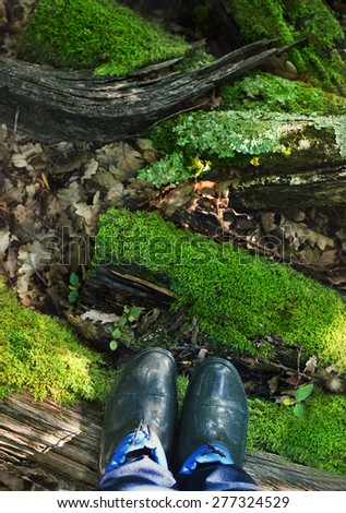 Rubber boots on the moss background. Summer forest - stock photo