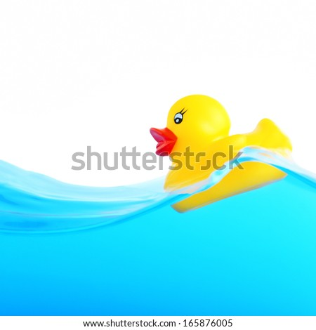Rubber duckling floating in water - stock photo