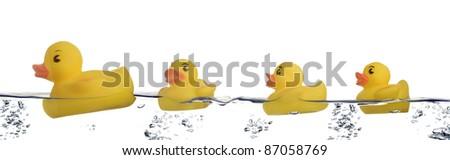 rubber ducks family - stock photo