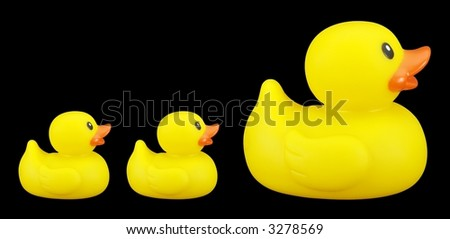 Rubber ducky family isolated on black.