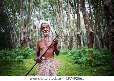 Rubber plantation worker.  - stock photo