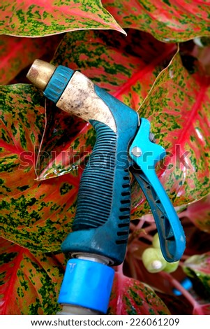 Rubber tube with garden water hose - stock photo