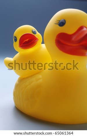 Rubber yellow duck isolated on coloured background. - stock photo
