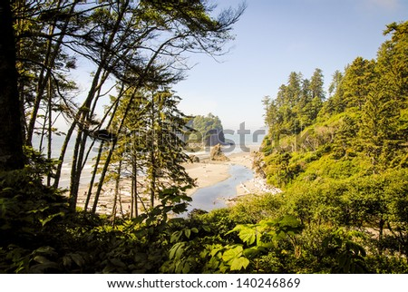 Ruby Beach. Olympic National Park, WA. - stock photo