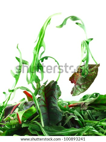 Rucola and Chard flying salad lightness concept - stock photo