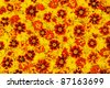 Rudbeckia laciniata, Lantana camara, Tagetes - flower heads - stock photo