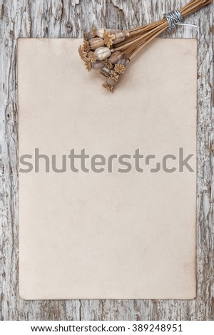 Rude wooden background with old paper and dry plants