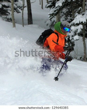 Rugged man skiing powder snow through a forest, Utah, USA. - stock photo