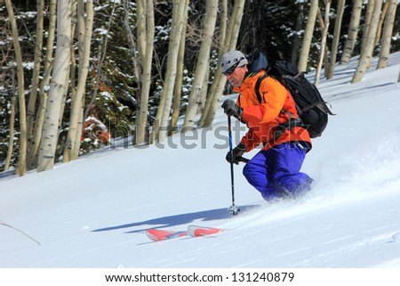 Rugged man skiing powder snow with aspen trees in the background, Utah, USA. - stock photo