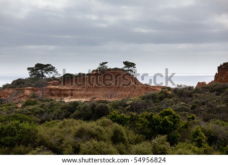 Rugged razor edged erosion in the sandstone on Torrey Pines hillside with the verdant bushes in the foreground - stock photo