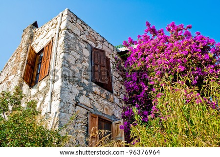 ruined old building and bush with pink flowers
