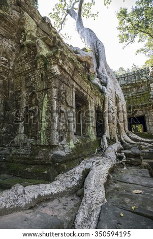 Ruined Temple in the Ankor Wat Comlex, Cambodia - stock photo