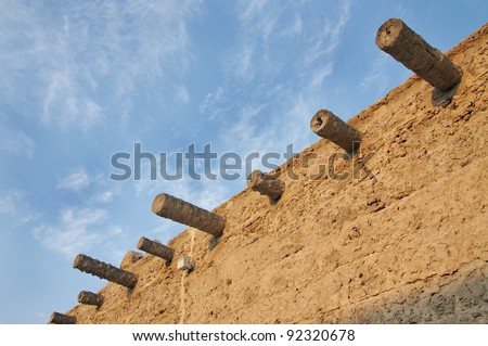 Ruins of palm logs protruding out of Arad Fort wall