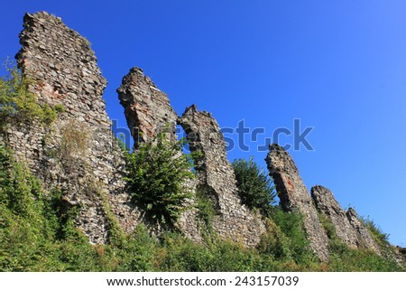 Ruins of the palace of the Drakula's son in Khust, Ukraine - stock photo