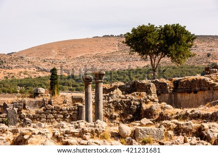 Ruins of Volubilis, an excavated Berber and Roman city in Morocco, ancient capital of the kingdom of Mauretania. UNESCO World Heritage - stock photo