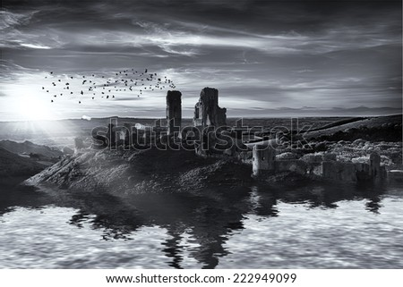 Ruins on the water landscape with sunrise and birds in black and white - stock photo