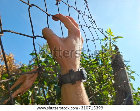 Run for the border , people hand on fence background - stock photo