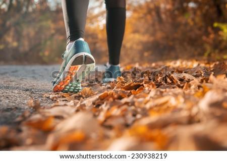 Run in the autumn woods - stock photo