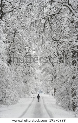 Runner in a winter wood - stock photo