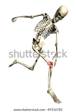 Running skeleton with sore inflamed knee on white background - stock photo