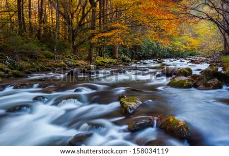 Running stream with beautiful autumn colors, the great smokey mountains national park - stock photo