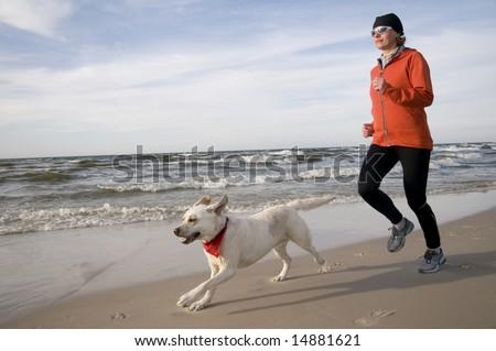 Running with Labrador Retriver - stock photo