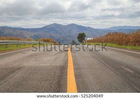 Rural asphalt road and cornfield  with blue sky white clouds background