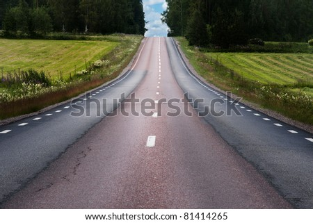Rural asphalt road in summer landscape
