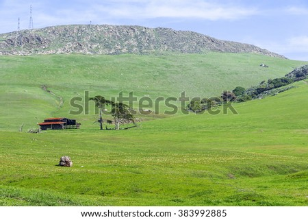Rural coastal hills / mountains, blue sky, white clouds, green fields / grass, barn, power lines, yellow flowers, & farm on the Big Sur coast, California Central Coast, near Cambria CA. - stock photo