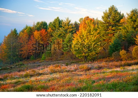 Rural country scene in the fall, Stowe, Vermont, USA - stock photo