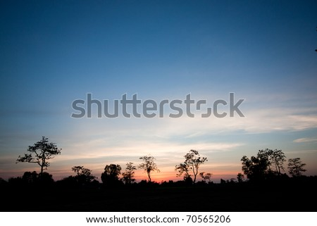 rural dawn in thailand