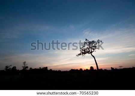 rural dawn in thailand - stock photo