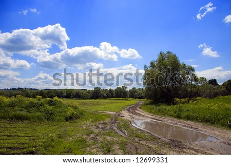 Rural dirty - road with puddle after summer rain, Russia (series Trees and Roads)